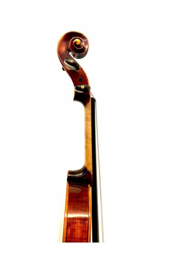 BV7 Series Professional
