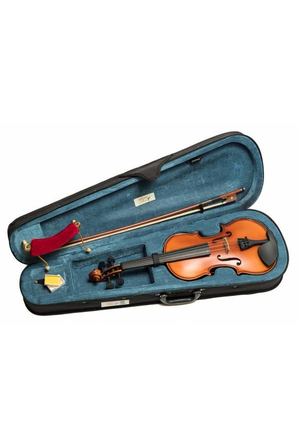 Violin Cases